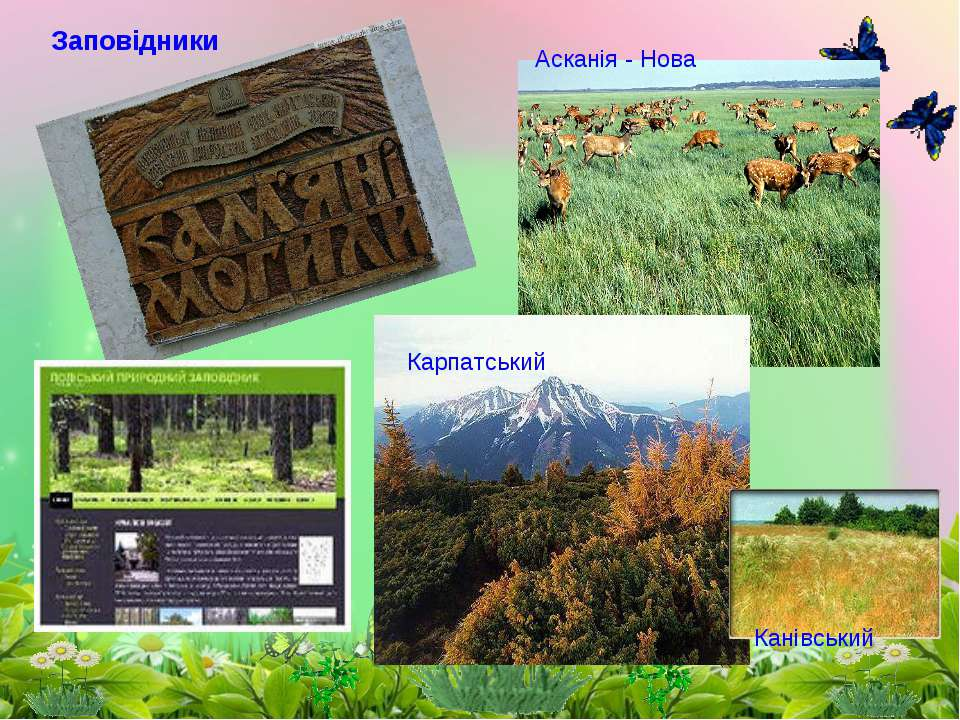 Асканія - Нова Канівський Карпатський Заповідники