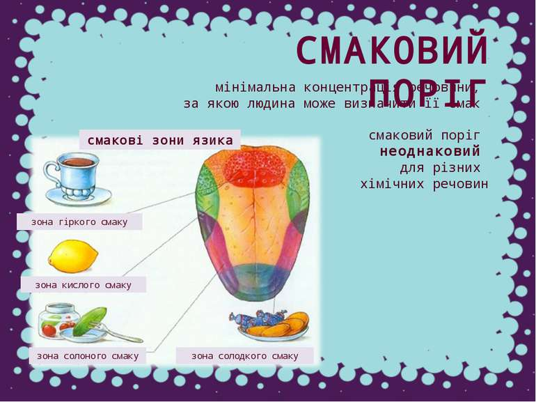 смакові зони язика зона гіркого смаку зона кислого смаку зона солоного смаку ...