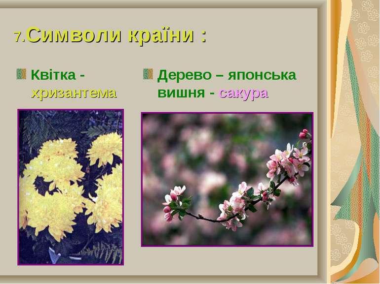 7.Символи країни : Квітка - хризантема Дерево – японська вишня - сакура