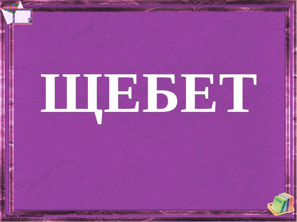 ЩЕБЕТ