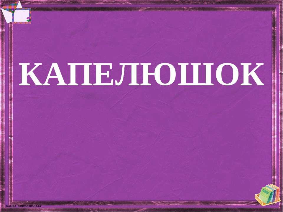 КАПЕЛЮШОК