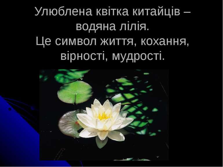 Улюблена квітка китайців – водяна лілія. Це символ життя, кохання, вірності, ...