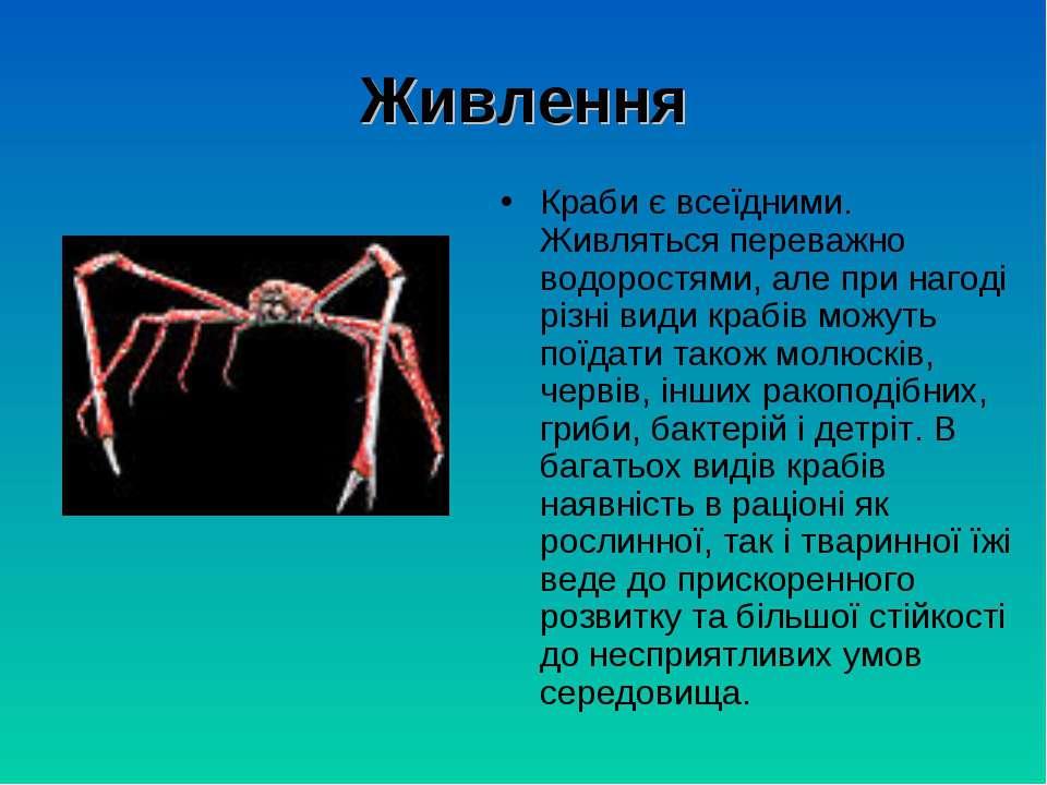 Живлення Краби є всеїдними. Живляться переважно водоростями, але при нагоді р...
