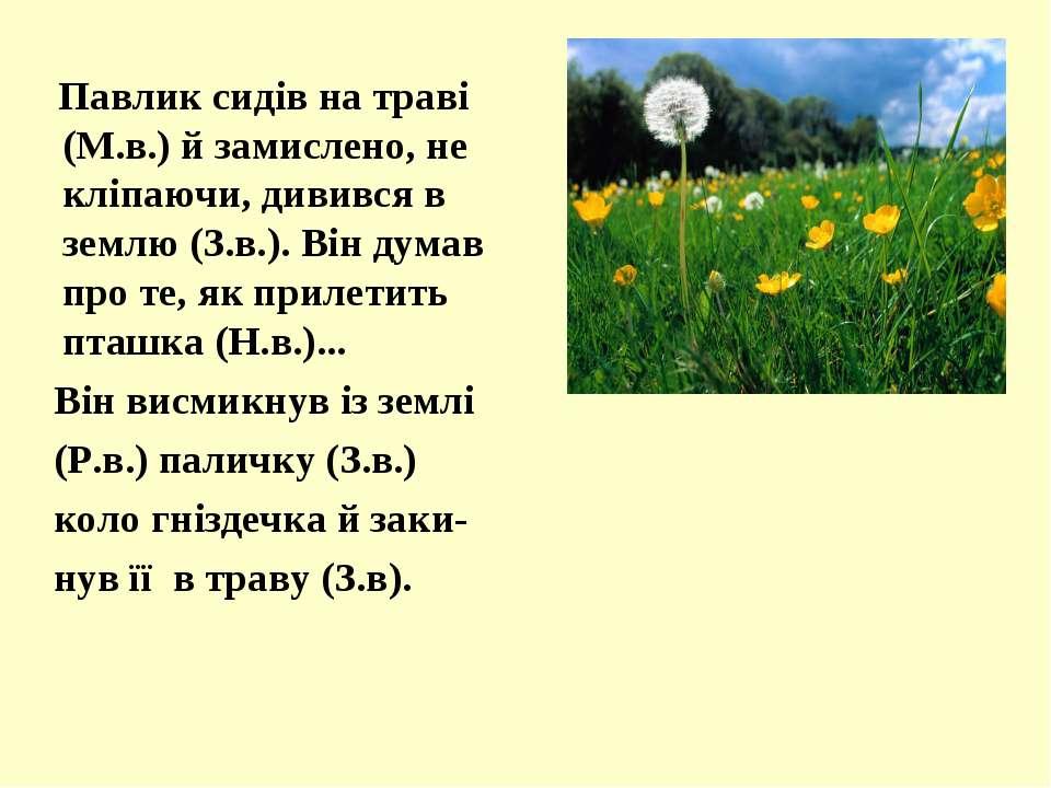 Павлик сидів на траві (М.в.) й замислено, не кліпаючи, дивився в землю (З.в.)...