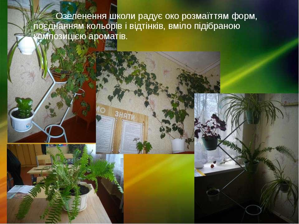 Озеленення школи радує око розмаїттям форм, поєднанням кольорів і відтінків, ...