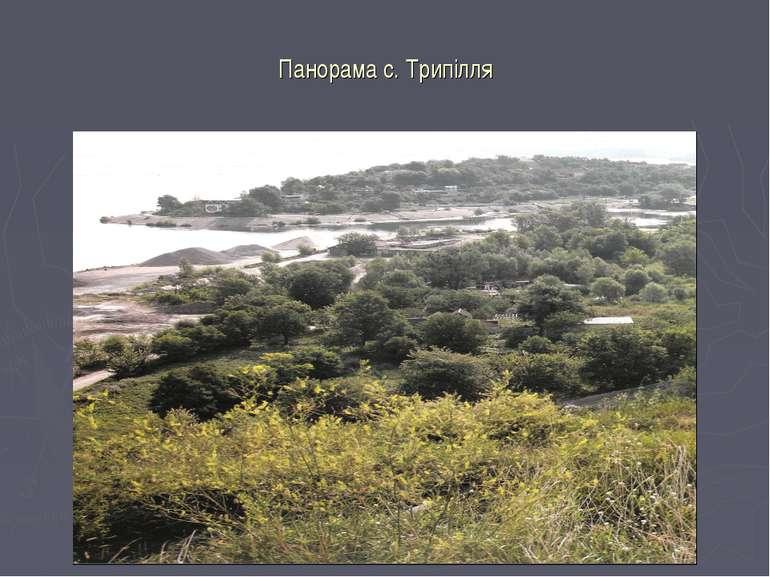 Панорама с. Трипілля