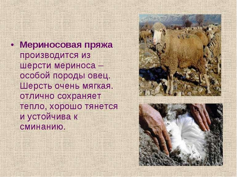 Мериносовая пряжа производится из шерсти мериноса – особой породы овец. Шерст...