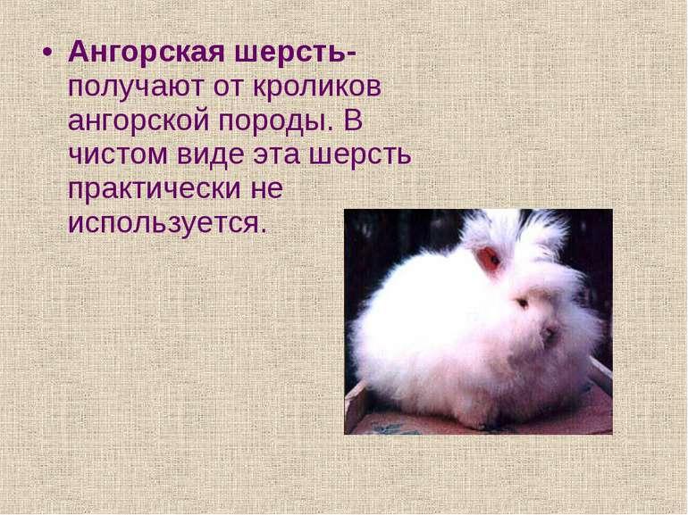 Ангорская шерсть- получают от кроликов ангорской породы. В чистом виде эта ше...