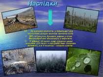Наслідки За даними екологів, у Швейцарії від кислотних дощів засихає третина ...
