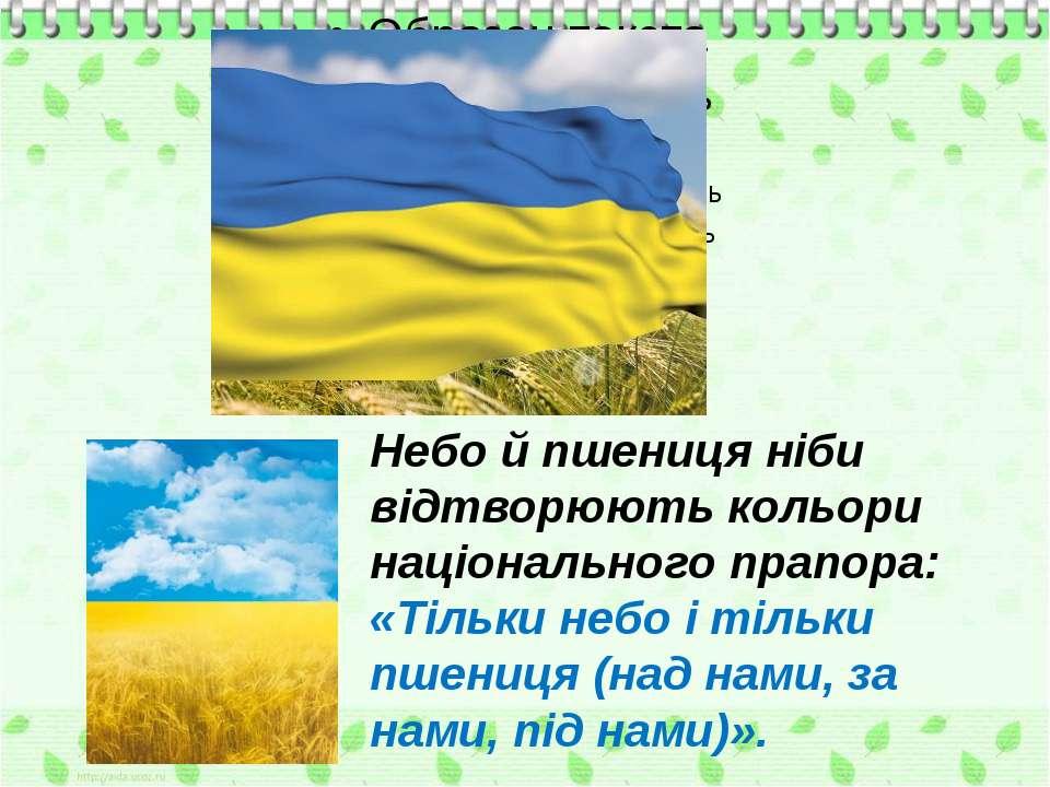 Небо й пшениця ніби відтворюють кольори національного прапора: «Тільки небо і...