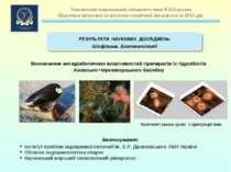 Визначення антидіабетичних властивостей препаратів із гідробіотів Азовсько-Че...