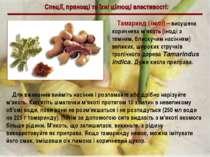Спеції, прянощі та їхні цілющі властивості: Тамаринд (імлі) – висушена коричн...