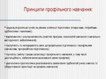 Принципи профільного навчання: фуркація (розподіл учнів за рівнем освітньої п...