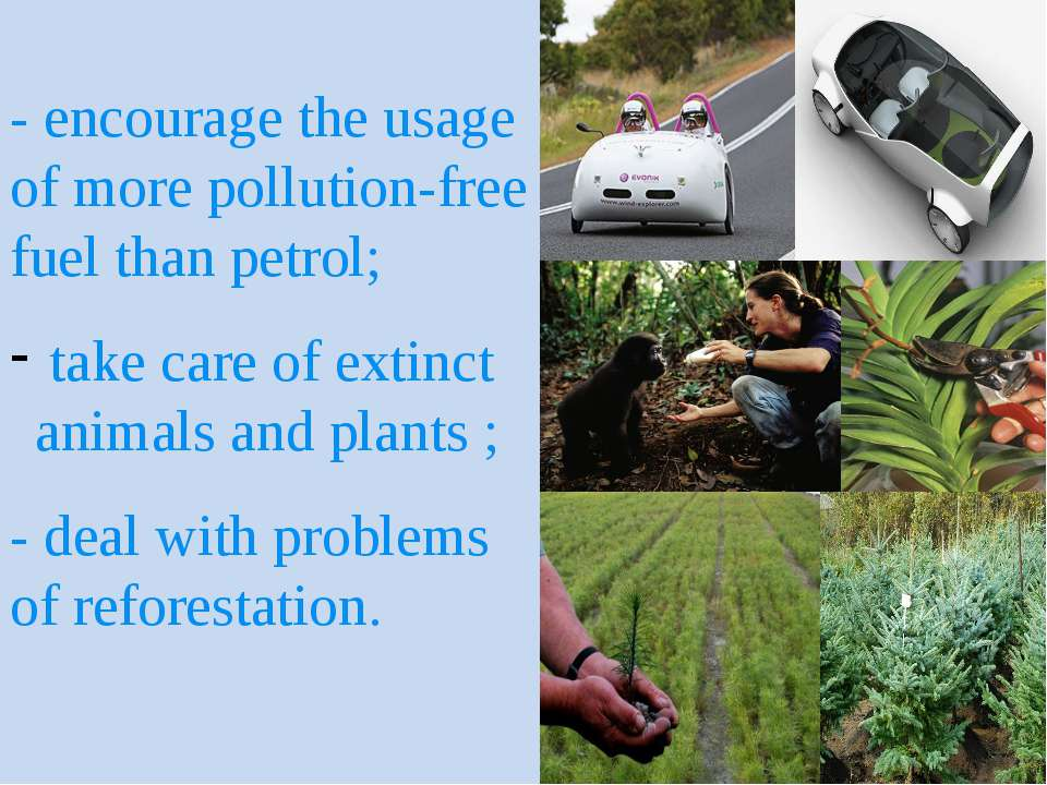 - encourage the usage of more pollution-free fuel than petrol; take care of e...