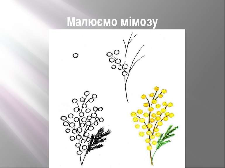 Малюємо мімозу