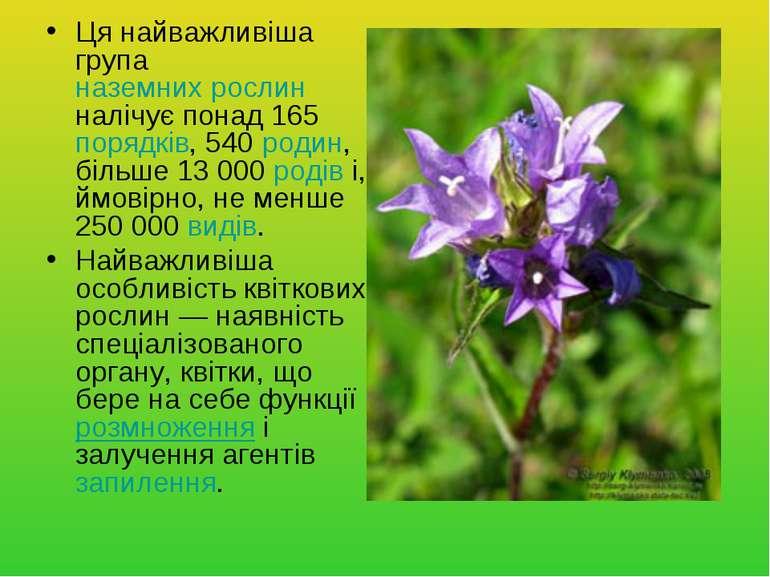 Ця найважливіша група наземних рослин налічує понад 165 порядків, 540 родин, ...