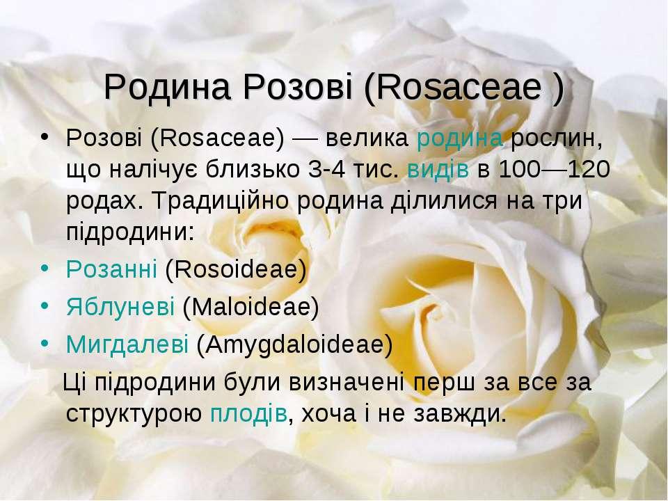 Родина Розові (Rosaceae ) Розові (Rosaceae)— велика родина рослин, що налічу...