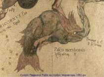 Сузір'я Південної Риби на глобусіМеркатора, 1551 рік