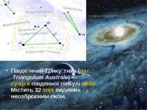 Півде нний Трику тник(лат.Triangulum Australe) —сузір'япівденної півкулі...