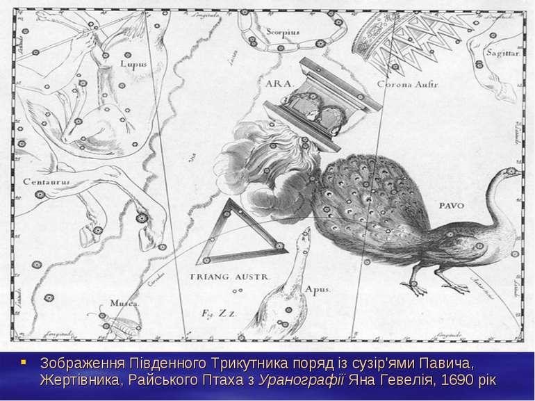Зображення Південного Трикутника поряд із сузір'ями Павича, Жертівника, Райсь...