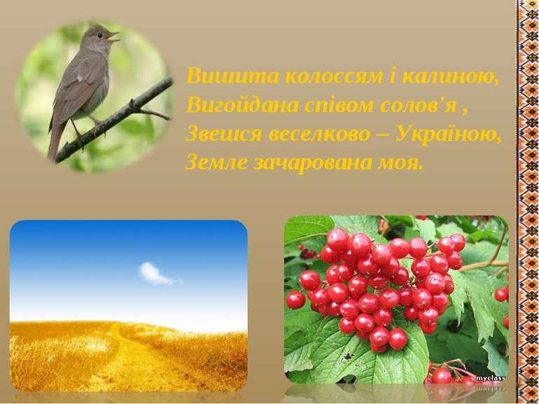 Вишита колоссям і калиною, Вигойдана співом солов'я , Звешся веселково – Укра...