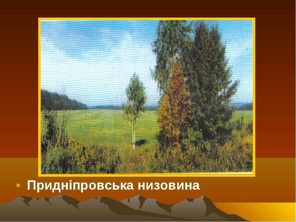 Придніпровська низовина