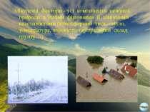 Абіотичні фактори - усі компоненти неживої природи з їхніми фізичними й хіміч...