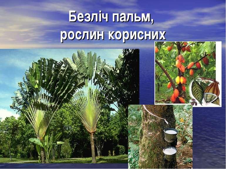 Безліч пальм, рослин корисних