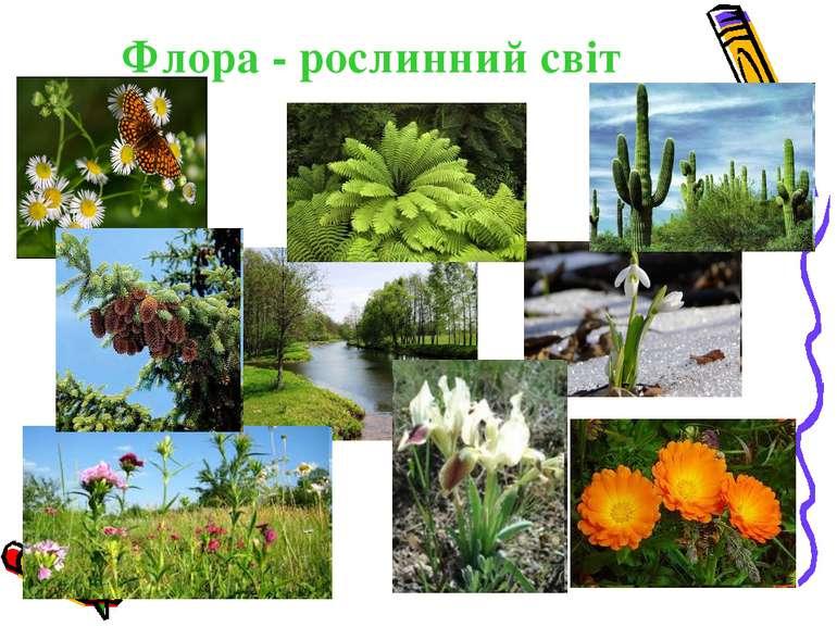 Флора - рослинний світ