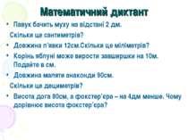 Математичний диктант Павук бачить муху на відстані 2 дм. Скільки це сантиметр...
