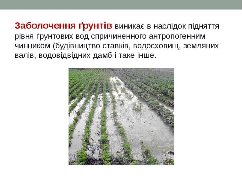 Заболочення ґрунтів виникає в наслідок підняття рівня ґрунтових вод спричинен...