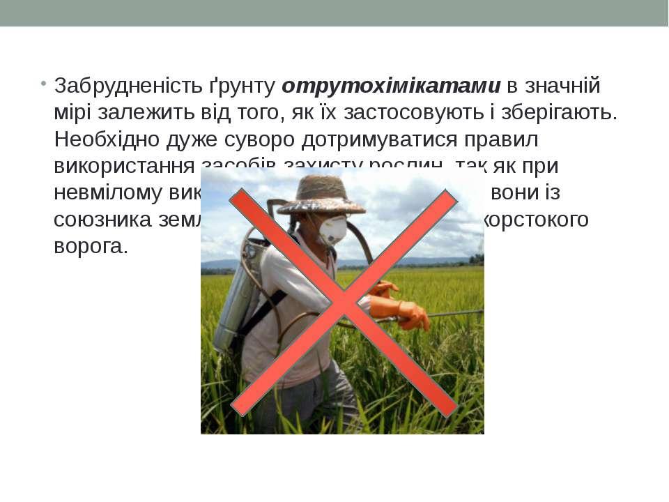 Забрудненість ґрунту отрутохімікатами в значній мірі залежить від того, як їх...