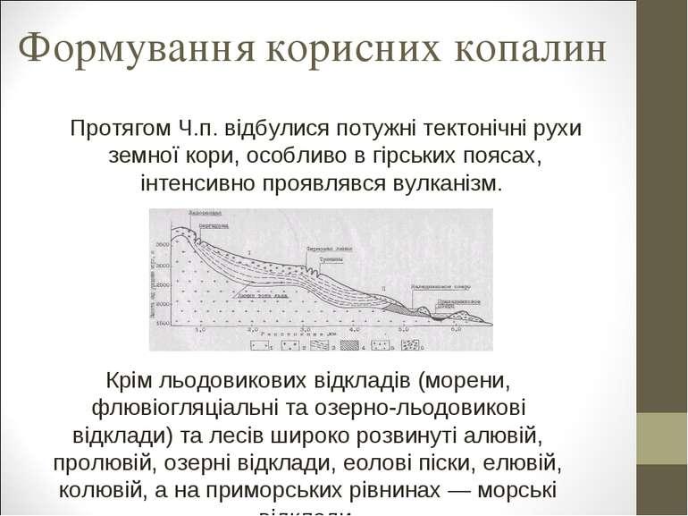 Формування корисних копалин Протягом Ч.п. відбулися потужні тектонічні рухи з...