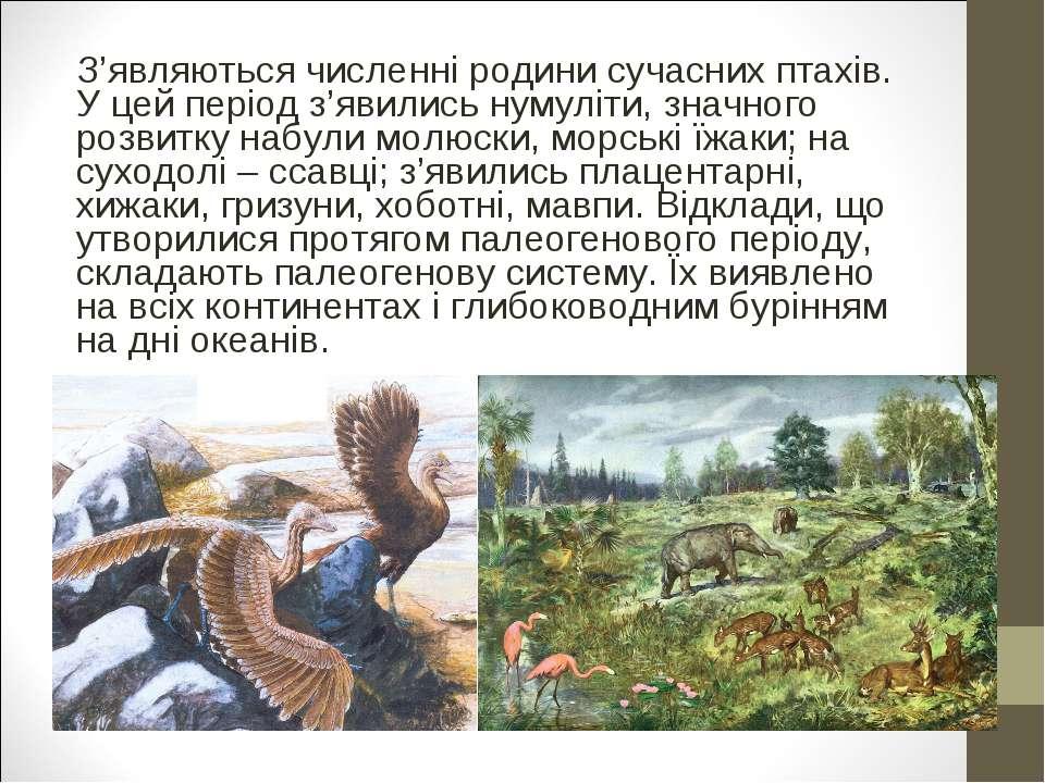 З'являються численні родини сучасних птахів. У цей період з'явились нумуліти,...