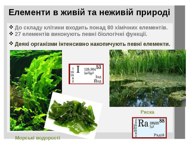 Елементи в живій та неживій природі До складу клітини входить понад 80 хімічн...