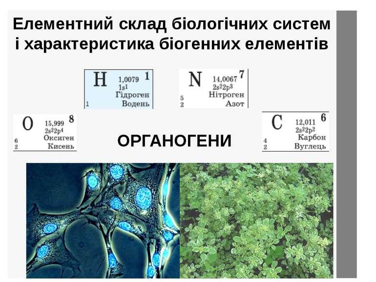 Елементний склад біологічних систем і характеристика біогенних елементів ОРГА...