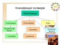 Класифікація полімерів Полісахариди Білки Крохмаль Целюлоза Натуральний каучу...