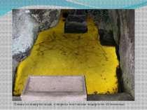 Плівка на поверхні води, утворена золотистою водоростюOchromonas