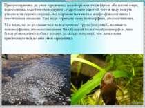 Пристосовуючись до умов середовища водойм різних типів (прісні або солоні озе...