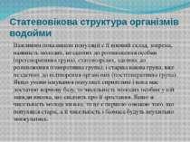 Статевовікова структура організмів водойми Важливим показником популяції є її...