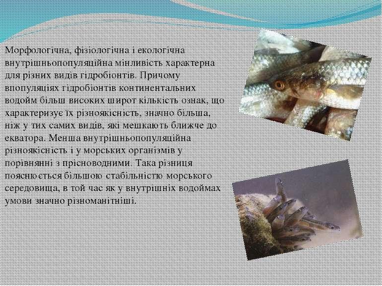 Морфологічна,фізіологічнаі екологічна внутрішньопопуляційна мінливість хара...