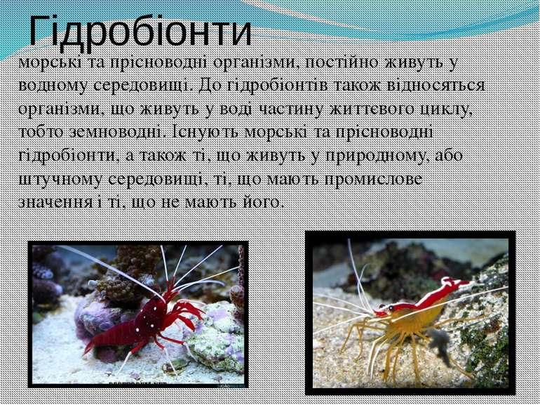 Гідробіонти морські та прісноводні організми, постійно живуть у водному серед...