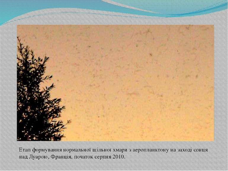 Етап формування нормальної щільної хмари з аеропланктону на заході сонця над...