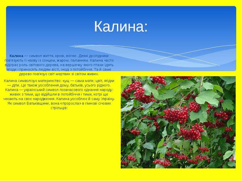 Калина — символ життя, крові, вогню. Деякі дослідники пов'язують її назву із ...