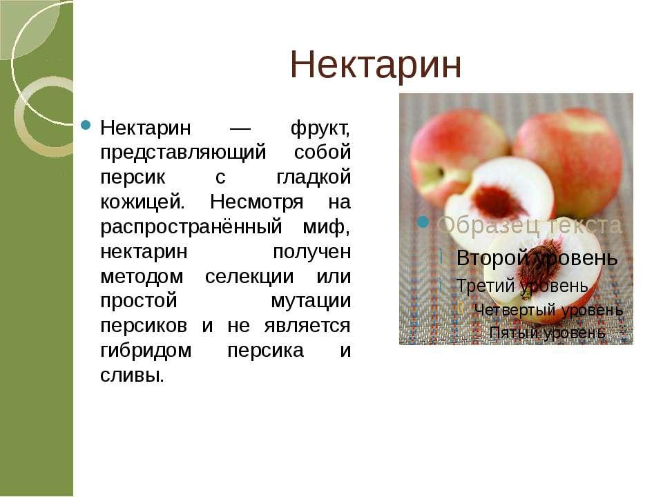 Нектарин Нектарин — фрукт, представляющий собой персик с гладкой кожицей. Нес...