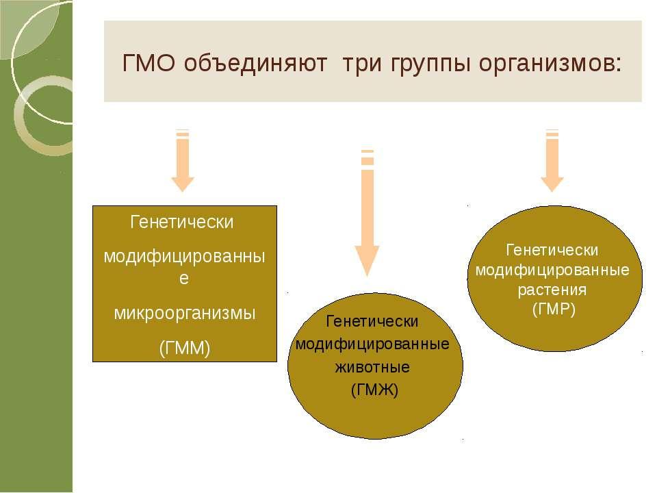 ГМО объединяют три группы организмов: Генетически модифицированные микроорган...