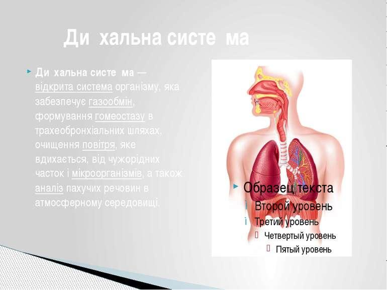 Ди хальна систе ма—відкрита системаорганізму, яка забезпечуєгазообмін, фо...