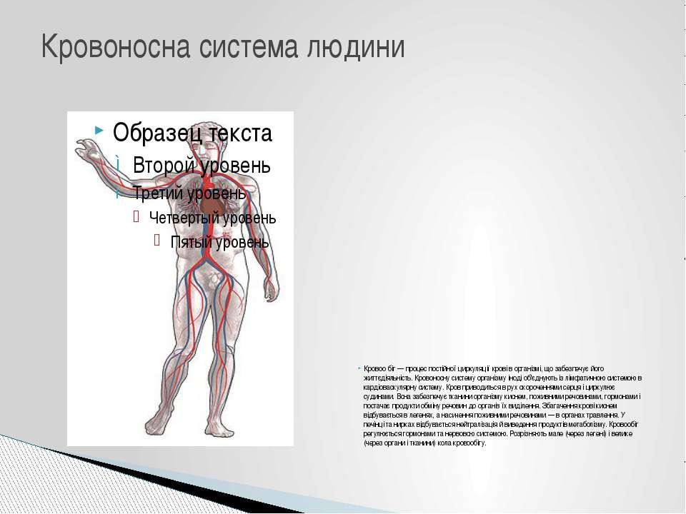 Кровоо біг — процес постійної циркуляції крові в організмі, що забезпечує йог...