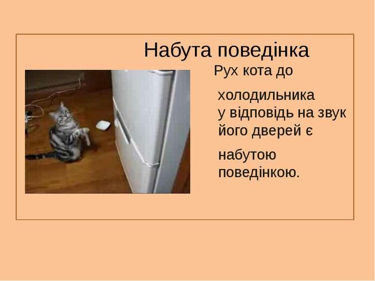 Набута поведінка Рух кота до холодильника у відповідь на звук його дверей є н...