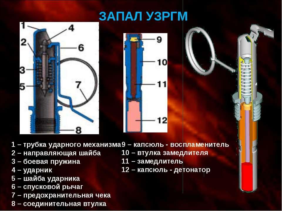 ЗАПАЛ УЗРГМ 1 – трубка ударного механизма 2 – направляющая шайба 3 – боевая п...